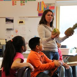 Localizing the Food System: Developing a Food Hub for SE Alaska