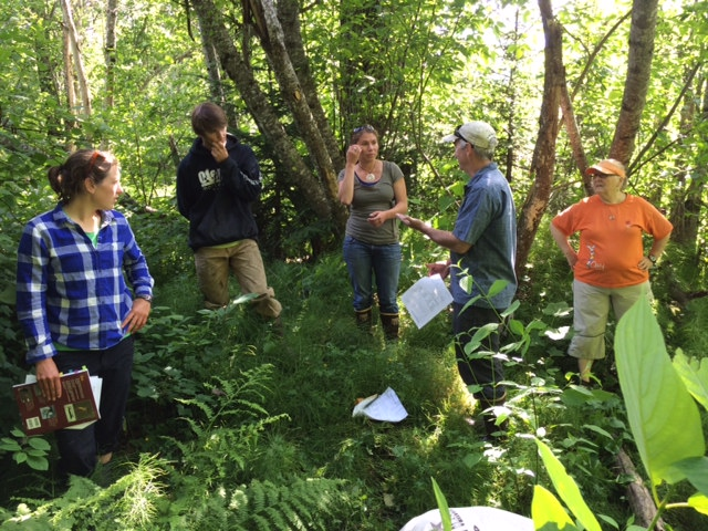 Community Practitioners Learn to Identify Bugs for Stream Health