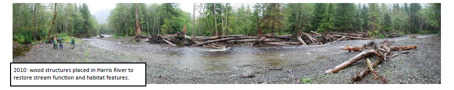 Tongass National Forest Watershed Restoration Program