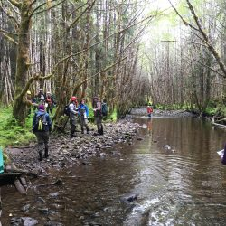 Resource Managers Build Watershed Restoration Capacity at Regional Workshop