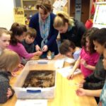Skagway Students Learn Salmon Life Cycle Hands-On Through Salmon In The Classroom