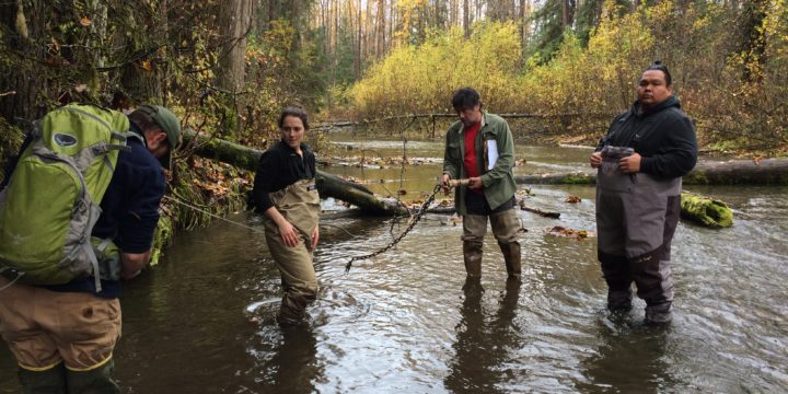 New! Management applications of freshwater temperature data