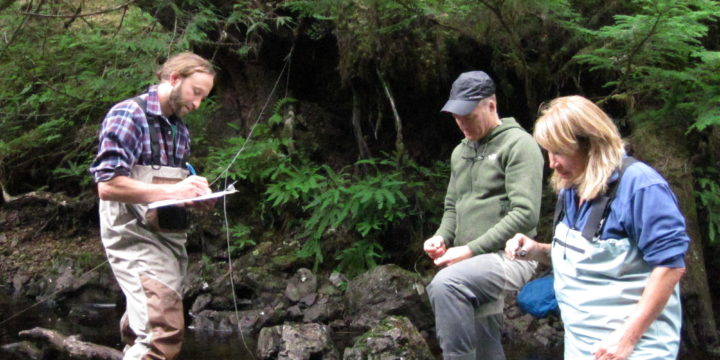 New stream temperature monitoring sites added in Southeast Alaska