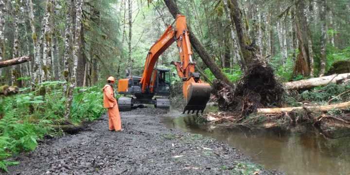 Work Starts for the Pat Creek Fish Habitat Enhancement Project