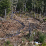 Restoring Fish Habitat on a Tributary of Pat's Creek